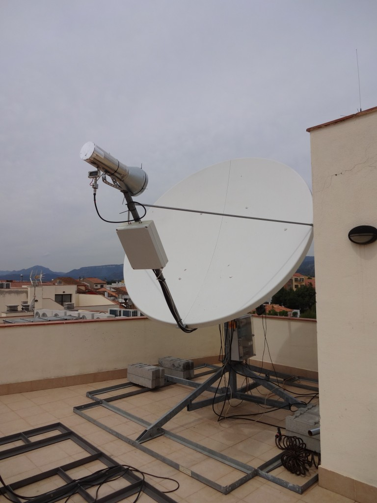 Feedhon on the dish